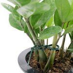 100 Pcs 17.5 cm Plastique Souple Attaches réglables pour plantes jardinage Plante Ties de la marque KINGLAKE image 4 produit